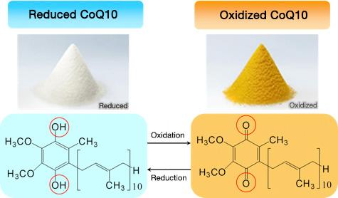 Quantitative Analysis Of Reduced And Oxidized Coq  Kaneka Techno